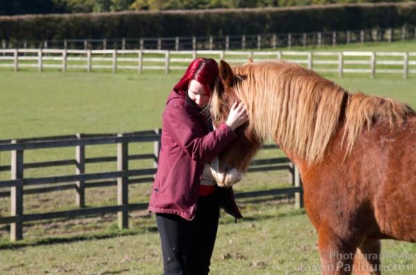 pony-adoration